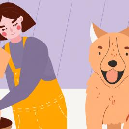 ¿Existen los celos caninos?