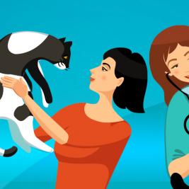 Intoxicación en gatos: cuidados y prevención